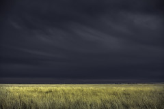 Spring Storm Threat (jessicalowell20) Tags: black blue clouds gold grass green highlights moodysky northamerica northerncolorado prairie spring sprinklers storm thewest