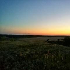 Поиски места ночевки оказались непростыми. Дубовую рощу оккупировали кабанчики, пришлось вставать в небольших кустарниках возле подсолнухов. Вид с места ночевки.
