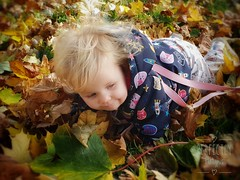 Playing in the leaves (perfectlyplatypus) Tags: leaves blonde playing fall autumn