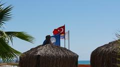2013-09-17_12-35-52_NEX-6_DSC02939 (Miguel Discart (Photos Vrac)) Tags: 100mm 2013 e18200mmf3563 focallength100mm focallengthin35mmformat100mm holiday iso100 nex6 sony sonynex6 sonynex6e18200mmf3563 travel turkey turquie vacance vacances voyage