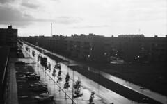 Rainy street (Arne Kuilman) Tags: lostandfound zimmermans photos photonotmine scan v600 epson holiday found gevonden street straat netherlands rainy