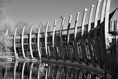 Art Pavilion / Mile End (Images George Rex) Tags: 9242419266b24580911f705d4f8c7f36 london towerhamlets uk mileendpark gsa architecture reflections lake swan england unitedkingdom britain imagesgeorgerex artpavilion georgegardnerassociates