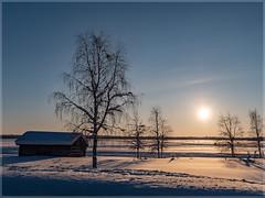 Sunrise in Finnland_92757 (uwe_cani) Tags: panasonic g9 finnland finland skandinavien scandinavia lappland lapland ylläs winter schnee snow natur nature outdoor landschaft landscape wolken clouds bäume trees himmel sky sonne sun sonnenaufgang sunrise gegenlicht backlight