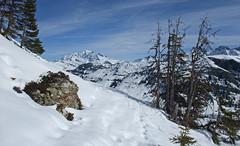 DSCF3739 (Laurent Lebois ©) Tags: laurentlebois france nature montagne mountain montana alpes alps alpen paysage landscape пейзаж paisaje savoie beaufortain pierramenta arèchesbeaufort