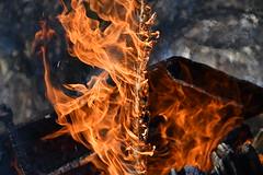 DSC_0300 (griecocathy) Tags: macro feu bois flamme floue orange jaune marron gris