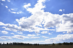 Just a Landscape (roanfourie) Tags: landscape nikon sigma dc 18200mm sky clouds blue white