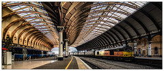 Under the Backbone of York (Jim the Joker) Tags: 60085 class60 gbrf colasrail york railwaystation coal freight railway train