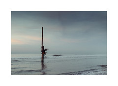 Art (gerritdevinck) Tags: art kunst seaview northsea sea belgium belgie beautifullight beautifulclouds beachlife beach belgiumcoast coast coastline kustlijn dekust koksijde koksijdeoostduinkerke gerritdevinckfotografie gerritdevinck weskust westvlaanderen ef50mmf12lusm