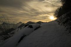 Frühlingswanderung (Toni_V) Tags: m2400572 rangefinder digitalrangefinder messsucher leica leicam mp typ240 type240 28mm elmaritm12828asph hiking wanderung randonnée escursione alpnachstadbürgenstock stansstad snow schnee trail wanderweg sentiero waldstätterweg sunrise sonnenaufgang switzerland schweiz suisse svizzera svizra europe ©toniv 2019 190406 nidwalden