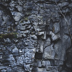 (i threw a guitar at him.) Tags: rock wall mountain side geology geography wet camping scenic mountains outdoors challenge moss texture alaska 2019 square