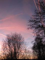 ....einfach geniessen..... (elisabeth.mcghee) Tags: bäume trees abendhimmel sunset himmel wolken sky clouds oberpfalz landschaft landscape upper palatinate
