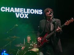 Chameleons Vox (Luis Pérez Contreras) Tags: visorfest festival benidorm alicante 2018 music spain livemusic concert concierto olympus m43 mzuiko omd em1 em1mkii penf live gig chameleons vox chameleonsvox