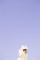 13 Figura_Vijanera 19-    -Ana Sanchez (Asociación Cultural Amigos de la Vijanera) Tags: 2019 anasviaje cantabria lavijanera silio vijanera2019 carnavaldeinvierno invierno