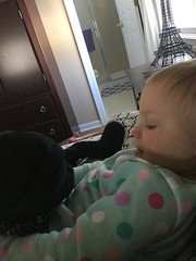 """Dani Cuddles with Darth Vader • <a style=""""font-size:0.8em;"""" href=""""http://www.flickr.com/photos/109120354@N07/46879759182/"""" target=""""_blank"""">View on Flickr</a>"""