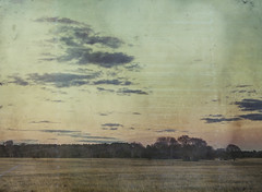 across the way (jssteak) Tags: canon winter texas vintage aged field country rural sky clouds sunset