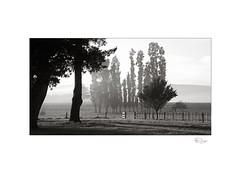 Sunrise (radspix) Tags: canon 5dii ef 24105mm f40 l is usm