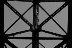 L1120681-2 (Zengame) Tags: leica leicasl leicasltyp601 sl summilux summiluxsl50mmf14asph japan typ601 ズミルックス ズミルックスsl ライカ 日本 東京都 jp