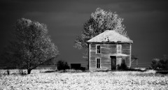 Fifty shades of gray (David Sebben) Tags: shades gray abandoned farmhouse mercer illinois black white monochrome trees lonesome alone lonely