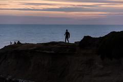 ArchitectGJA-9465.jpg (ArchitectGJA) Tags: lighthousepoint surfing californiababy wetsuit santacruz xcel lighthousefield california beach marineanimals coast cliffs streetphotography montereybay surfingsteamerlane waves steamerlane oneill