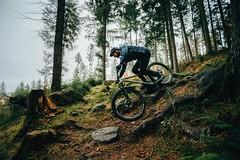 2019 Pipedream 7 (luke_don) Tags: mtb hardtail all mountan enduro downhill bikepacking adventure outdoors rowdy fun