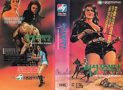 """Seoul Korea vintage VHS cover art for Z-grade cult fave """"The Female Bunch"""" (1971) - """"Whipped"""" (moreska) Tags: seoul korea vintage vhs cover art retro horror western erotic thefemalebunch 1971 cultfilm bmovie grindhouse drivein whip cleavage desert crime 1970s auteurs videocassette home entertainment pop culture collectibles archive museum rok asia"""