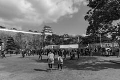 Akashi Castle (Park) (Hideki-I) Tags: nikon d850 blackandwhite bw 白黒 akashi hyogo japan 2470 monochrome
