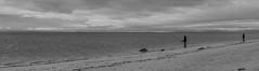 _DSC0141-Pano-2 (johnjmurphyiii) Tags: 06516 autumn beach clouds connecticut longislandsound originalnef sky tamron18400 usa westhartford westhaven johnjmurphyiii