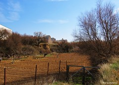 Tierras Riojanas (kirru11) Tags: campo tierras huertas peñas castillo rocas árboles hierva cielo quel larioja españa kirru11 anaechebarria canonpowershot