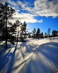 Shadows (maybrittballo) Tags: komsa alta finnmark norhtofnorway nordnorge norway norge winter shadows winterlight