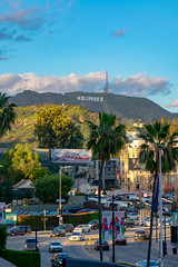 Hollywood sign with view (J.JJIK) Tags: walkoffame losangeles landscape hollywood hollywoodsign sign city cityview palmtree palm cars sunset goldentime la nikon d3400 nikond3400 70300 70mm f45 iso100 dslr snapshot