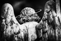 Angels, we have grown apart.  Charles Bukowski (thescourse) Tags: angel statua monument cemeteries cimiteromonumentale milano milan graves canoniani canon canoneos5dmkii canonitalia biancoenero blackandwithe bn bw
