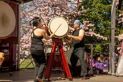 CherryBlossomDC2019-668.jpg (carlton.colter) Tags: kizuna cherryblossomdc taiko taikotakeover sakurataikofest washington dc usa
