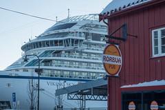 Tromsö 2019 (530 von 699) (pschtzel) Tags: 2019 nordlicht tromsö