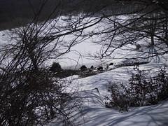 DSCN1144 (Etnaviva) Tags: lagomaulazzo nebrodi