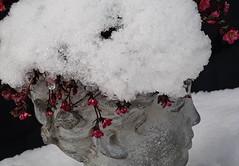 Palmsonntags-Hütchen (Fay2603) Tags: skulptur sculpture schnee neve neige snow flowers blumen blüten blossom