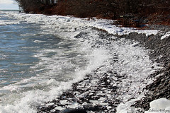 wave3 (Rebecca Evelynn) Tags: sky lakeontario benches chickadee barredowls naturephotography presquileprovincialpark waves crazyclouds ice ducks woodpeckers floating islands bigrock moss greenmoss