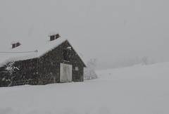 Husum Barn (bulldog008) Tags: winter barn rustic building rural snow outside architecture serene beautiful cold husum washington canon sx60 sx60hs