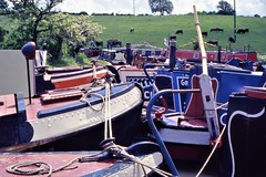 Boats on the Wendover Canal (cycle.nut66) Tags: wendover arm grand union canal narrow boats narrowboats narrowboat water red blue yellow green festival brass tiller sunlight sunshine summer kodak ektachrome film camera epson 4490 scan analogue