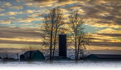 Silo in the frame (Christie : Colour & Light Collection) Tags: winter silhouette silo farm farming country winterscenery winterscene westcoastwinter misty barn britishcolumbia evening lowlight sundown framed countryliving dyke clouds sky muted mist fog steam light lighting pacificnorthwest landscape farmland wintery balance moodlighting treesilhouette nikon