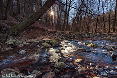 20190224-0116-La_Hoëgne-bw (Rob_Boon) Tags: 3sgnd ardennen belgië lahoëgne landscape lndpol nisi on1 rivier vallei valley stream river forest woods rural robboon belgium wallonie ardennes sun backlight sunrise longexposure