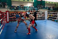 """foto adam zyworonek fotografia lubuskie iłowa-6303 • <a style=""""font-size:0.8em;"""" href=""""http://www.flickr.com/photos/146179823@N02/32563295567/"""" target=""""_blank"""">View on Flickr</a>"""