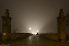 Puente en dia neblinoso (Roman bridge in foggy day) (jesussanchez95) Tags: salamanca puente bridge foggy niebla noche night nocturna arquitectura architecture fog urbanlandscape paisajeurbano misty