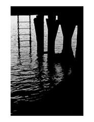 (Brendan | Toews) Tags: leica leicam7 leicasummilux50mmf14asph 50mm ilford ilfordhp5 bw blackandwhite grain sea ocean vancouver