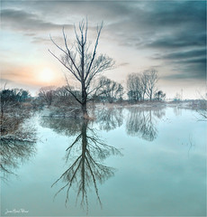 Lagoon (Jean-Michel Priaux) Tags: paysage landscape nature tree winter cold season lake water river blue sunset lonesome lonely alone shadow priaux hdr sky clouds reflct double savage paint painting forest trees alsace muttersholtz ried france