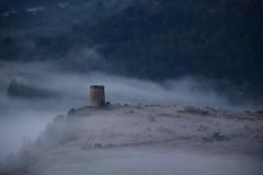 DSC_1555 (griecocathy) Tags: paysage moulin vent brume végétations gelée forêt gris vert beige crème