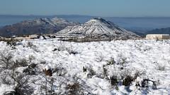 north-scottsdale-1902230136 (nagerfran) Tags: cactus winter desert storm snow cold freeze arizona scottsdale tontonationalforest
