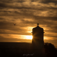 A Bastion's wake-up (glank27) Tags: malta bastions fortifications valletta sunrise bird fly sky fiery clouds karl glanville canon eos5d mkiv ef70300mm f456l silhoutte europe city sun burst light warm mornings ngc