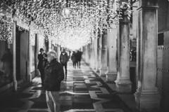 Surprised (mripp) Tags: venice venezia urban city night bokeh streetshot igstreet streetshooter streetlife streetgrammer urbanaisle streettogether streetleaks aspfeatures inpublicsp lensonstreets capturestreets fromstreetswithlove streetphotoclub urbanshot streetview lensculturestreets storyofthe street