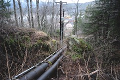 (i threw a guitar at him.) Tags: alaska skagway march 2019 walk hike infrastructure hydroelectric pipes water hydro electricity apt power telephone mountain side moss green woods forest klondike national park exploring urbex downhill powerline town view creative commons history energy