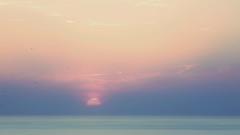 Swallows (endresárvári) Tags: sunset sea nature landscape canon sardinia italy summer holiday birds colorful pastel sun clouds